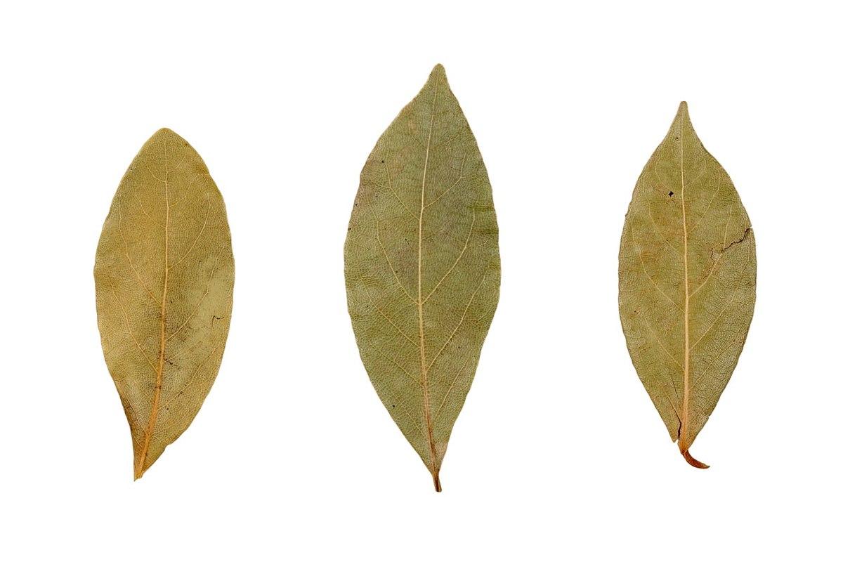 3 bay leaves