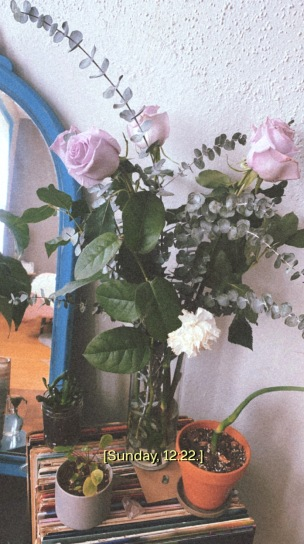 A photo of a bouquet of lavender flowers and a white carnation. In the background is a mirror that shows the reflection of other plants and records in a sunlit apartment