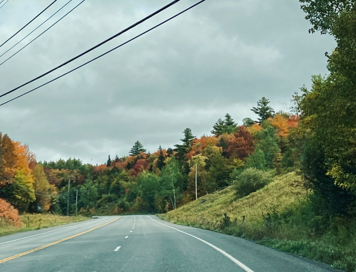 photo of an empty road that curves into the distance. trees with colorful autumn leaves line the road and a handful of grey clouds hang low on the horizon.