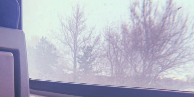 Image shows a view of trees outside from inside a train car. There is a leg in the frame, wearing jeans and sneakers in the shot as well.