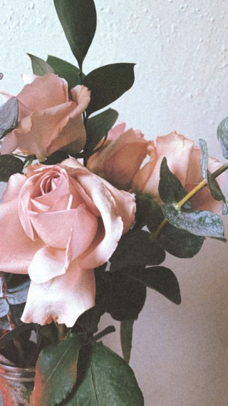 Image shows a bouquet of blush colored roses and fresh eucalyptus