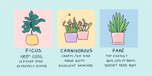 A hand drawn image of three plants in pastel colors. They are attached with the following descriptions: Ficus — very cool leather dyke, extremely giving. Carnivorous —crafty/DIY dyke, kinda goth, excellent skincare Fake — Top energy, buys lots of books, doesn't read them.