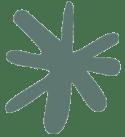 divider - green star