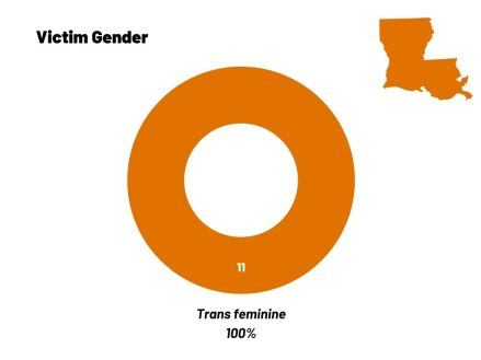 A circle chart that shows all 11 people victim to anti-trans homicides were trans women.