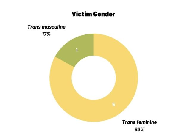 Circle chart showing the gender of anti-trans homicides in Puerto Rico in 2020: 5 were transfeminine and 1 was transmasculine.