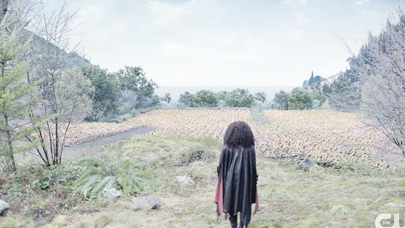 Batwoman looking at desert rose field