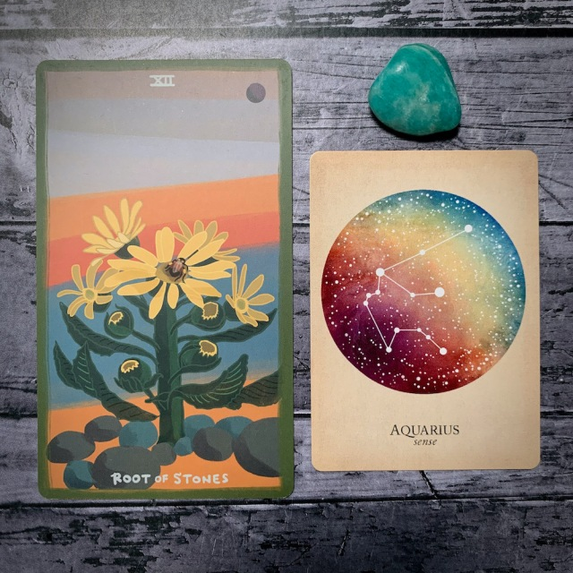 A photo of the tarot card for Root of Stones and the astrological card representing Aquarius, along with a small crystal