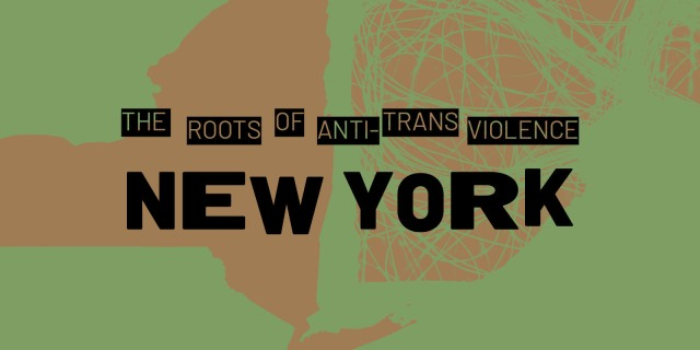 The Roots of Anti-Violence: New York is set against a green background.