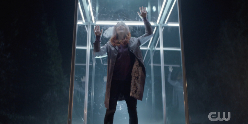 Stephanie Brown is in a glass cage