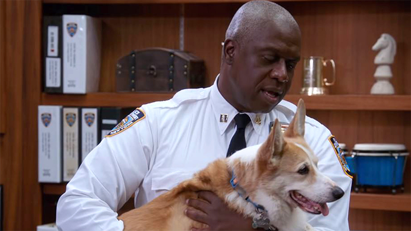 Captain Holt holds Cheddar in his arms