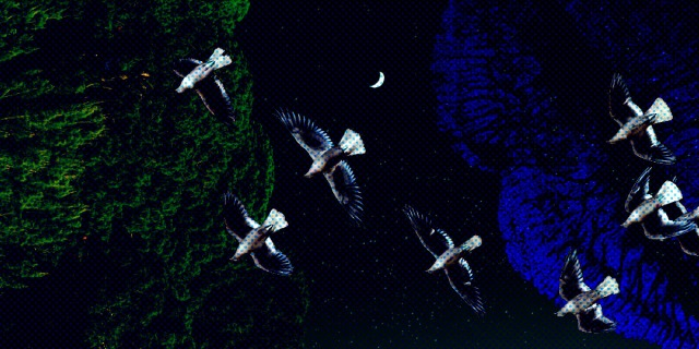 a collage of three textures - a green forest, a black night sky and a royal blue lipstick mark. there is a flock of birds flying above the composition, and in the far distance, you can see the thin sliver of a crescent moon