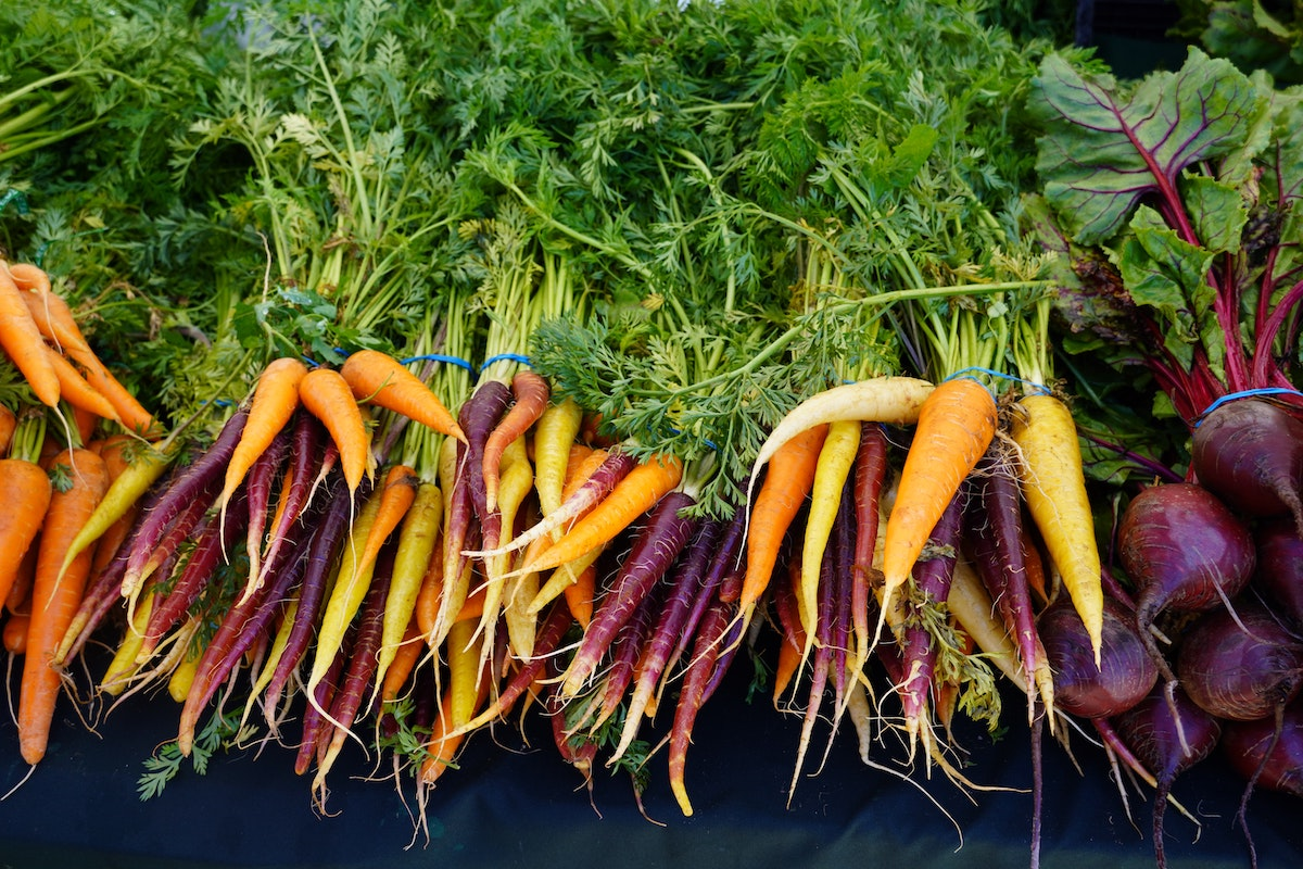 A photo of bunches of carrots and beets. Carrots and beets are great vegetables to grow from seed in May.