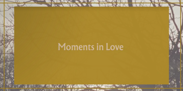 """Image shows a yellow box with the text """"Moments in love"""" inside it and behind it there is an image of branches."""