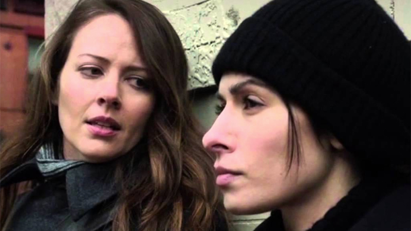 Root and Shaw, Person of Interest