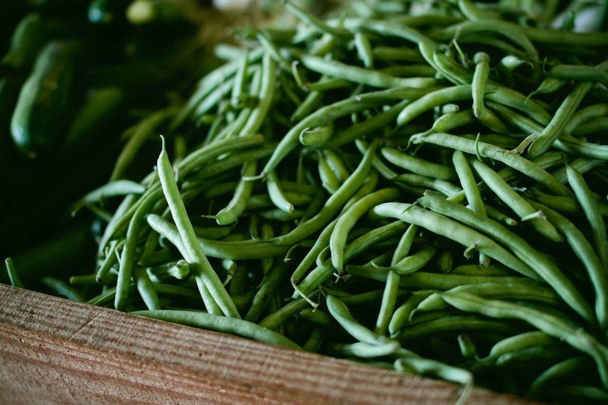 A close up photo of a basket of long green beans. Green beans are an excellent choice of vegetable for beginner gardeners.