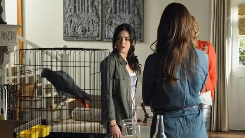 Aria looks at Tippi the Bird in her cage and has an epiphany