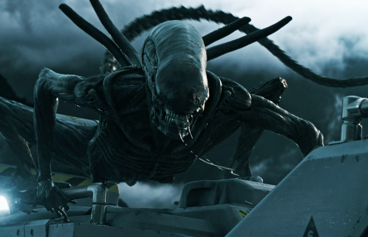 A scary looking alien, from the film Alien Covenant