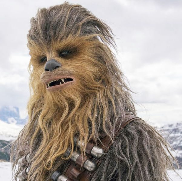 Chewbacca from Star Wars, of the hairy wookie alien race, looking wistful against a snowy backdrop