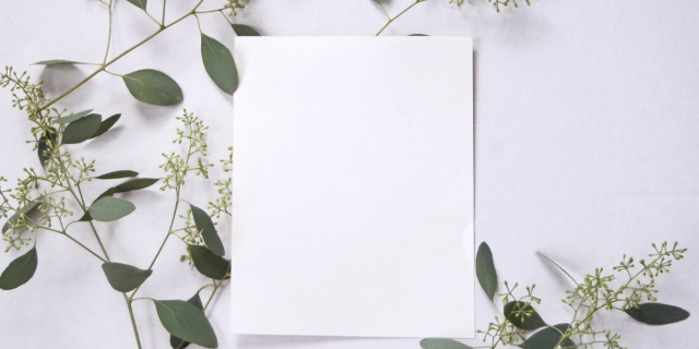 A blank white piece of paper against a white background is surrounded by small branches and leaves.