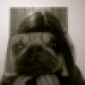 Profile picture of excursor