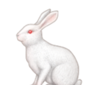 Profile picture of roschen