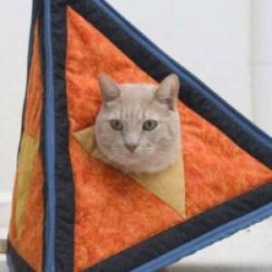 Profile picture of Triangle Cat
