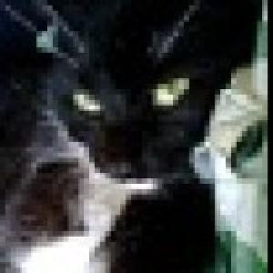 Profile picture of Yoana