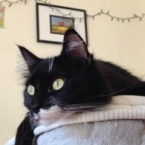 Profile picture of erin